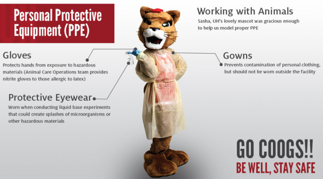 Cougar Mascot in Personal Protective Equipment