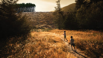 children running on path through woods